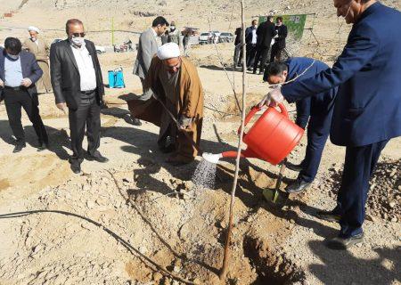 غرس درخت در روز درختکاری توسط امام جمعه ویلاشهر